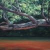 "Branch Over Red Water 8.25"" x 11"" (21 x 28 cm), pastel"